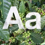 A is for Arabica