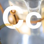 C is for Chemex